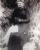 Turner, Rosanna (1845-1932)